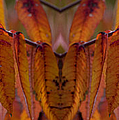 Autumn Leaves 03 Mirror Image by Thomas Woolworth
