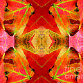 Autumn Leaves Mirrored by Rose Santuci-Sofranko