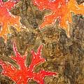 Autumn Maple Leaves by Kiruba Sekaran
