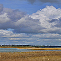 Autumn Marsh At Shell Island by Paulette B Wright