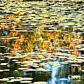 Autumn Marsh by Cheryl Baxter