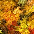 Autumn  by Martin Capek