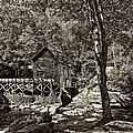 Autumn Mill 2 Sepia by Steve Harrington