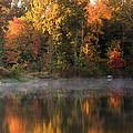 Autumn Morning by Amanda Kiplinger