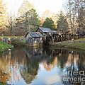 Autumn Morning At Mabry Mill by Carol Lynn Coronios