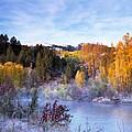 Autumn Morning by Leland D Howard