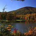 Autumn Mountain View by Anne Barkley