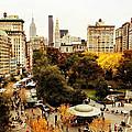 Autumn - New York by Vivienne Gucwa