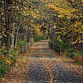 Autumn On Bike Trail  by Patrice Charette