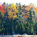 Autumn On The Fulton Chain Of Lakes In The Adirondacks II by David Patterson