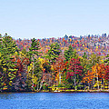 Autumn On The Fulton Chain Of Lakes In The Adirondacks Iv by David Patterson