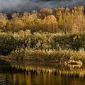 Autumn On The Klamath 3 by Greg Nyquist