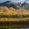 Autumn On The Klamath 4 by Greg Nyquist