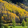 Autumn On The Links by John McArthur