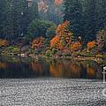 Autumn On The Umpqua by Suzy Piatt
