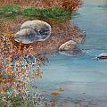 Autumn On The Yampa by Mary Levingston
