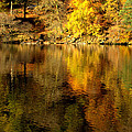 Autumn On Ullswater by Linsey Williams
