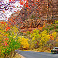 Autumn On Zion Canyon Scenic Drive In Zion National Park-utah  by Ruth Hager