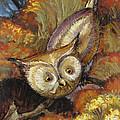Autumn Owl by Randy Wollenmann
