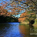 Autumn Paddle On The Quinnebaug  by Neal Eslinger