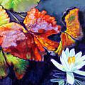 Autumn Palette by John Lautermilch