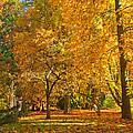 Autumn Park by Jaroslav Frank