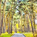 Autumn Park by Vitaly Kozlovtsev