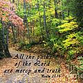 Autumn Path With Scripture by Jill Lang