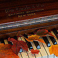 Autumn Piano 1 by Mick Anderson