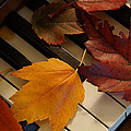 Autumn Piano 2 by Mick Anderson