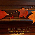 Autumn Piano 3 by Mick Anderson