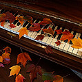 Autumn Piano 7 by Mick Anderson