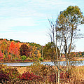 Mendon Ponds In Autumn by Aimee L Maher ALM GALLERY
