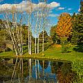 Autumn Pond by Steve Harrington