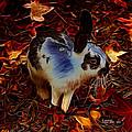 Autumn Rabbit 5010 - James Ahn by James Ahn