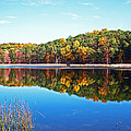 Autumn Reflection by Aimee L Maher ALM GALLERY