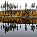 Autumn Reflection by Allan Van Gasbeck