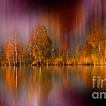 Autumn Reflection Digital Photo Art by Heinz G Mielke