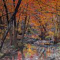 Autumn Reflection by Scott Hervieux