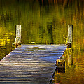 Autumn Reflections And Boat Dock On A Pond Near Yankee Springs Michigan by Randall Nyhof