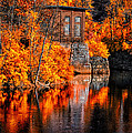 Autumn Reflections  by Bob Orsillo