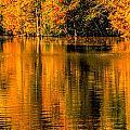 Autumn Reflections by David Kay