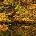 Autumn Reflections by Don Dennis