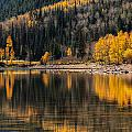 Autumn Reflections by Gina Herbert