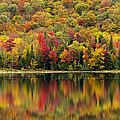 Autumn Reflections by John Vose