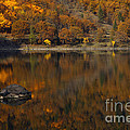 Autumn Reflections by Mike  Dawson