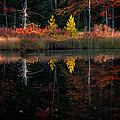 Autumn Reflections - Red Eagle Pond by Thomas Schoeller
