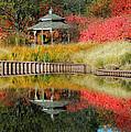 Autumn Reflections by Teresa Schomig