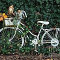 Autumn Ride by Brigitte Mueller