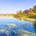 Autumn River by Alain De Maximy